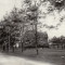 South Ave. at the turn of the century. The Brooks Sanatorium is visible in this postcard.