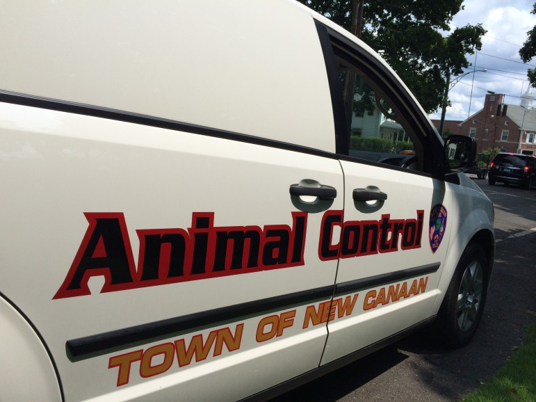 Animal Control van. Credit: Michael Dinan