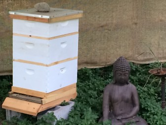 "Here's a closer look at one of the beehives that Shawn Orr assembled at his New Canaan home. Each box will hold about 60 pounds of honey—which is how much a hive needs to get through the winter—and anything that's in the top box, called the ""honey super,"" might next year be harvested by the family, the Orrs say. Credit: Michael Dinan"