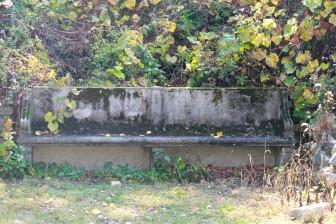 The bench at Waveny near the sledding hill. Credit: Darcy Pennoyer Smith