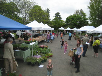 New Canaan Farmers Market. Credit: Terry Dinan