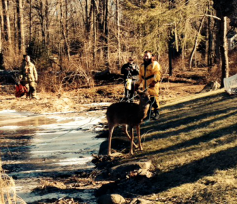Firefighters used a rope to help extricate the deer from the ice of a pond where it had fallen through, on Salem Road in New Canaan on Jan. 17, 2015.