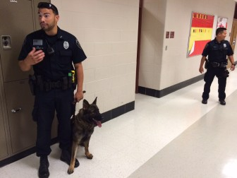 New Canaan Police K-9 Officer David Rivera and drug-sniffing dog Apollo at NCHS on Aug. 26, 2015. School Resource Officer Jason Kim stands nearby. Credit: Michael Dinan