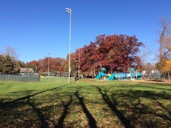 This area at Mead Park, in a little-used corner beyond the playground and right field fence at Gamble, now is under consideration for bocce courts. Credit: Michael Dinan