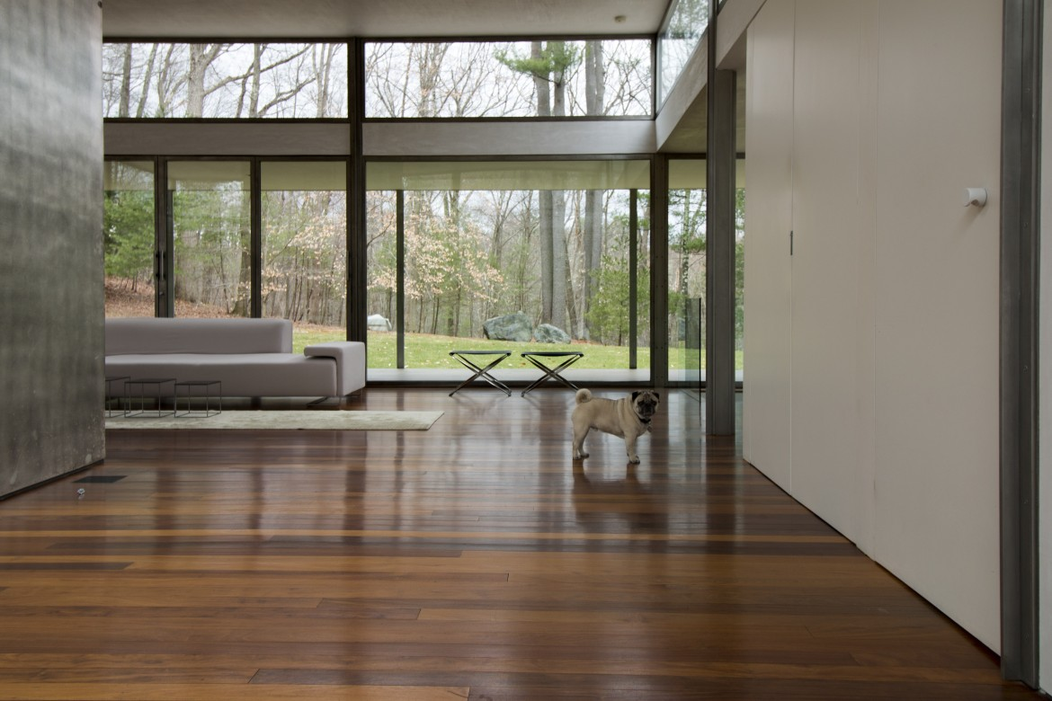 New canaan modern house day tour for Modern day houses