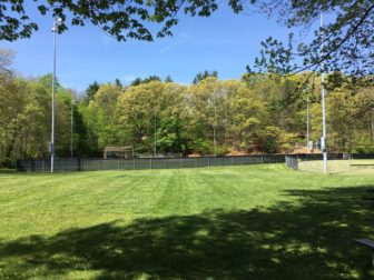 Here's the area where Len Paglialunga would like to install bocce courts. Credit: Michael Dinan