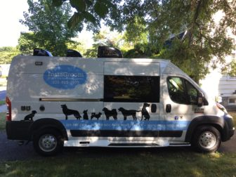 The InstaGroom mobile dog grooming truck, with logos designed by New Canaan-based Nurenu. Credit: Marie Maguire