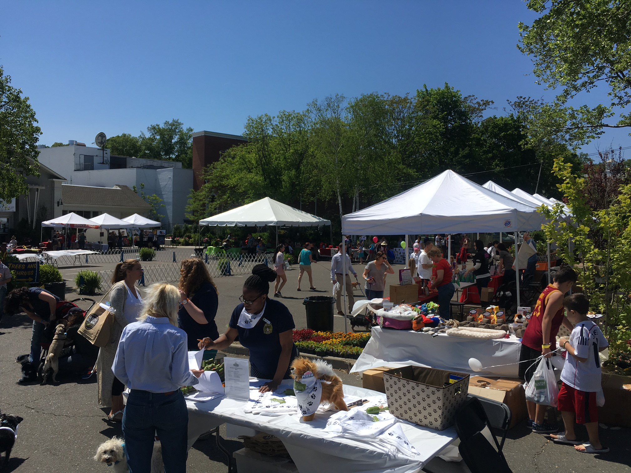 New Canaan Food Pantry